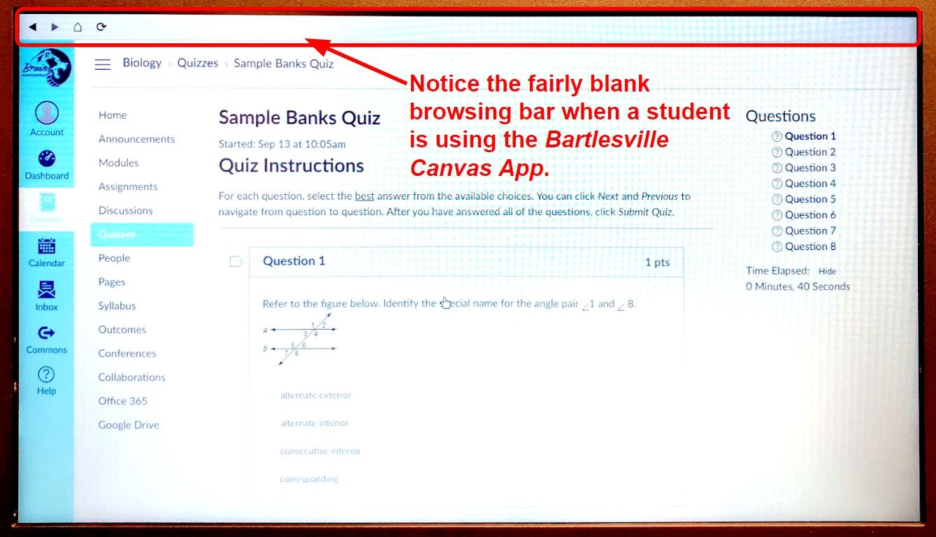 Canvas Quiz Tips