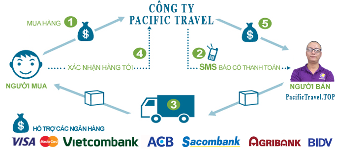 công ty pacific travel