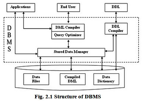 Chapter 1 mera semester the components of dbms perform these requested operations on the database and provide necessary data to the users the various components of dbms are shown ccuart Choice Image
