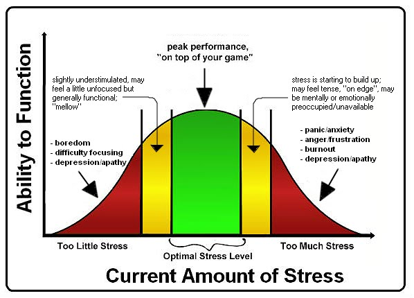 What Is Stress  Office Of Stress Management