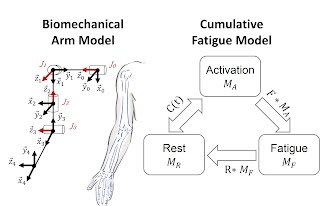 https://sites.google.com/site/sujinjang11/research/modeling-cumulative-arm-fatigue-in-mid-air-interactions