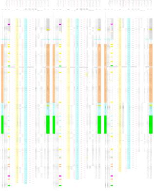 201205029b run-06 data_Page_1,2,3 final