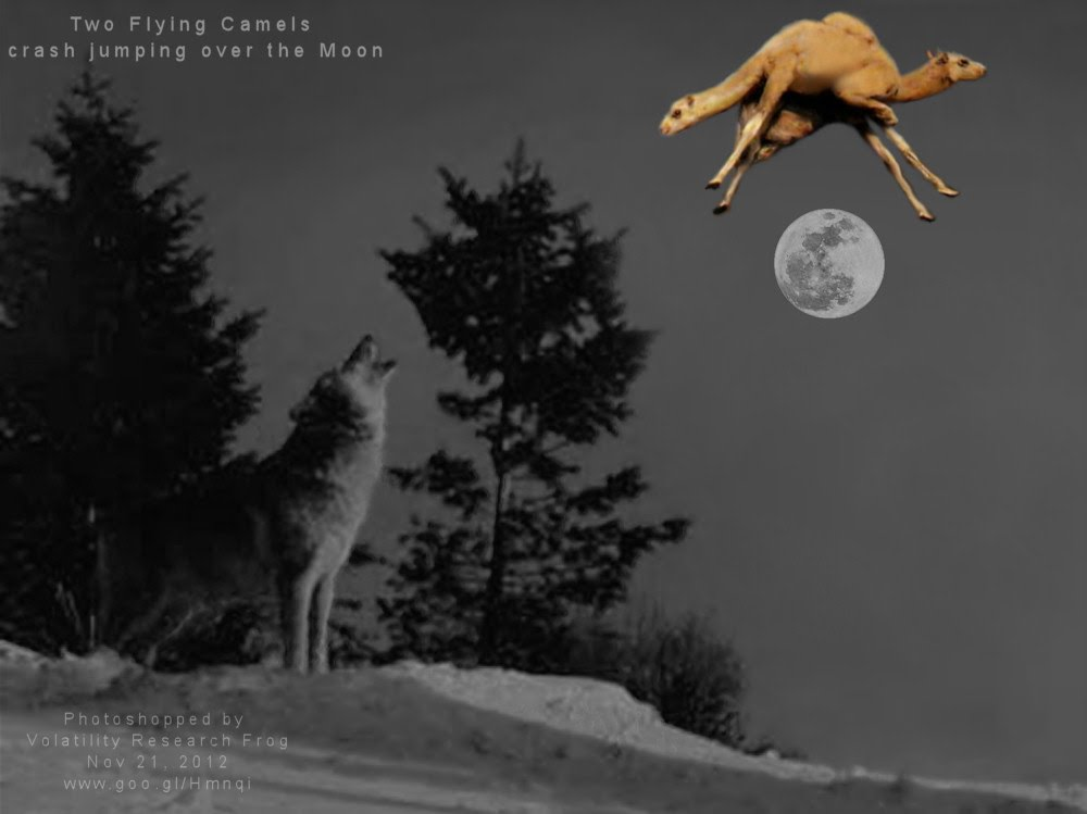 Two Flying Camels crash jumping over the Moon