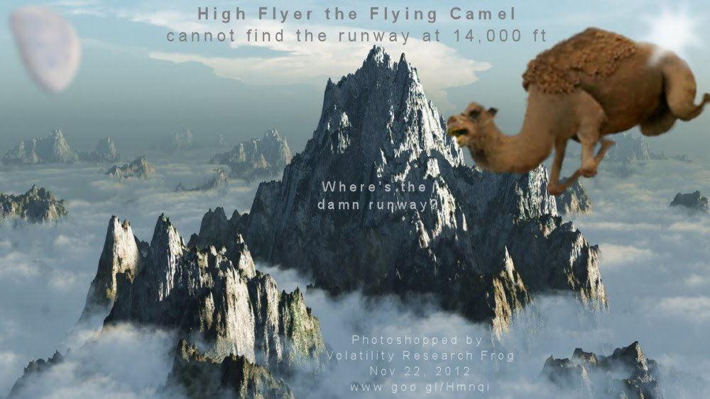 High Flyer the Flying Camel cannot find the runway at 14,000 ft