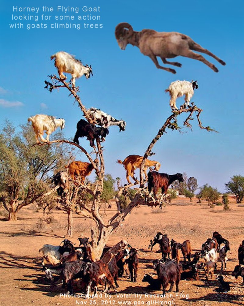 Horney the Flying Goat looking for some action with goats climbing trees