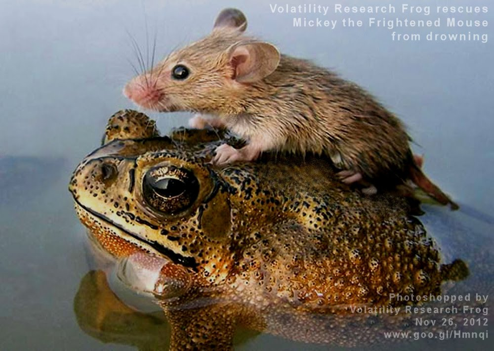 Nov 26, 2012  Volatility Research Frog rescues Mickey the Frightened Mouse from drowning