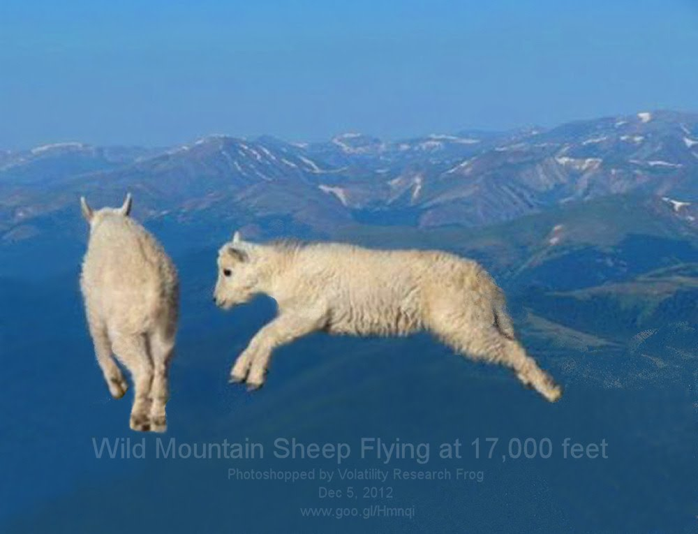 Dec 5, 2012  Wild Mountain Sheep Flying at 17,000 feet