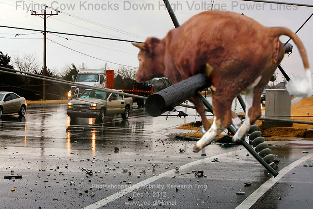 Flying Cow Knocks Down High Voltage Power Lines