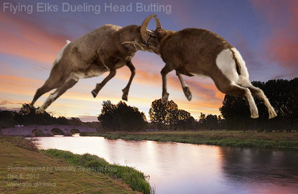 Dec 8, 2012  Flying Elks Dueling Head Butting