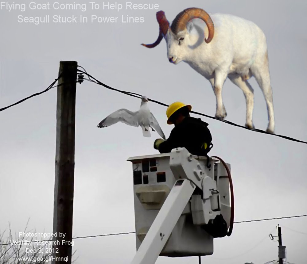 Dec 9, 2012  Flying Goat Coming To Help Rescue  Seagull Stuck In Power Lines