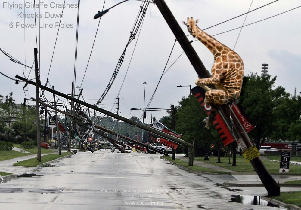 Flying Giraffe Crashes Knocks Down 6 Power Line Poles
