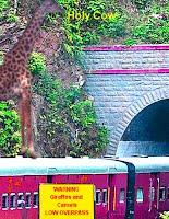Flying Giraffe Landing On Train  Going Into Tunnel BIG Trouble 2