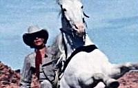 Lone Ranger gets DUI on Horseback, eludes police chase