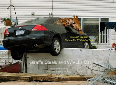 Dec 14, 2012  Giraffe Steals and Wrecks Car