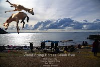Worst Flying Horses Crash Ever (Volatility Research) 1000w