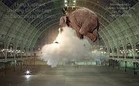 Flying Elephant Standing On Two Legs On Cloud Inside Big Room