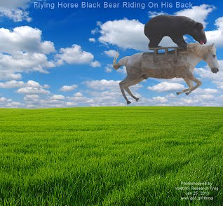 Flying Horse Black Bear Riding On His Back (Volatility Research) 1000w