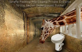 Giraffe Peeking Into Obama Private Entrance To His Secret Underground Bunker (Volatility Research) 1000w