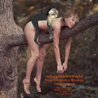 Hillary Clinton Naked Real Capuchin Monkey On Her Back (Volatility Research) 1000w