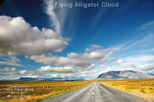 Flying Alligator Cloud (Volatility Research) 1000w