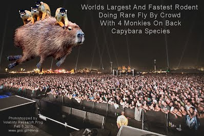 Worlds Largest And Fastest Rodent Doing Rare Fly By Crowd With 4 Monkies On Back Calybara (Volatility Research) 1000w