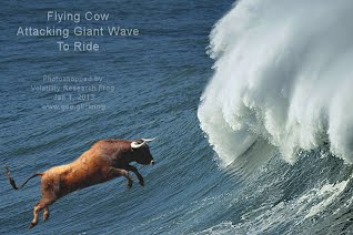 Flying Cow Attacking Giant Wave To Ride (Volatility Research) 1000w