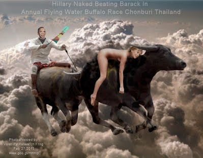 Hillary Naked Beating Barack In Annual Flying Water Buffalo Race Chonburi Thailand (Volatility Research) 1000w
