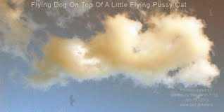 Flying Dog On Top Of A Little Flying Pussy Cat (Volatility Research) 1000w