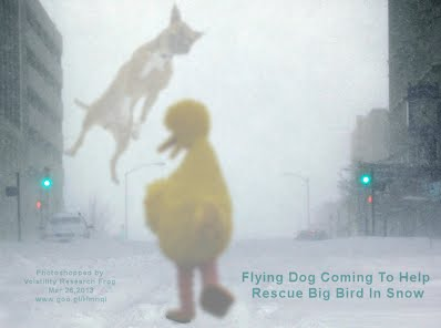 Flying Dog Coming To Help Rescue Big Bird In Snow 1000w