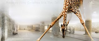 Reason Why Giraffes Are Too Tall (Volatility Research)