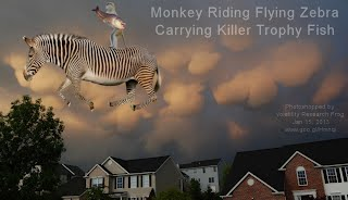 Monkey Riding Flying Zebra Carrying Killer Trophy Fish (Volatility Research) 1000w