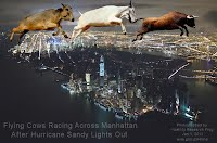 Flying Cows Racing Across Manhattan After Hurricane Sandy Lights Out (Volatility Research) 1000w