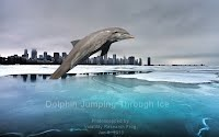 Dolphin Jumping Through Ice (Volatility Research) 1000w