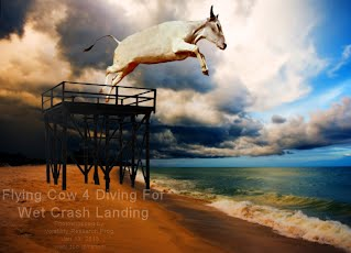 Flying Cow 4 Diving For Wet Crash Landing (Volatility Research) 1000w