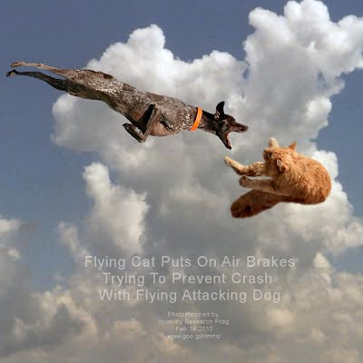 Flying Cat Puts On Air Brakes Trying To Prevent Crash With Flying Attacking Dog (Volatility Research) 1000w