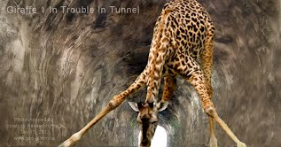 Giraffe 1 In Trouble In Tunnel (Volatility Research) 1000w