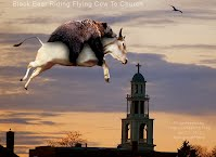 Black Bear Riding Flying Cow To Church (Volatility Research) 1000w.pspimage