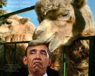 Muslim Camel Kissing Obama (Volatility Research) 1000w