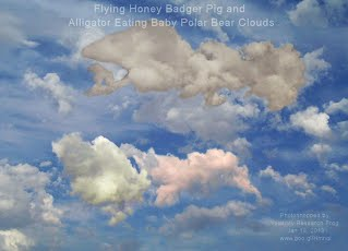 Flying Honey Badger Pig and Alligator Eating Baby Polar Bear Clouds (Volatility Research) 1000w