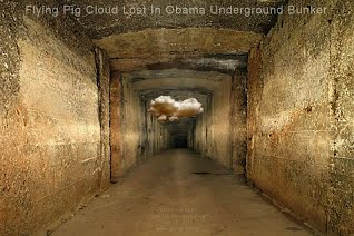 Flying Pig Cloud Lost In Obama Underground Bunker (Volatility Research) 1000w