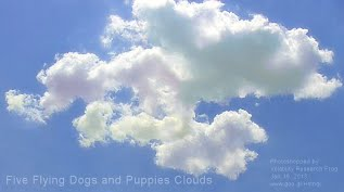 Five Flying Dogs and Puppies Clouds (Volatility Research) 1000w