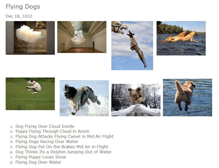 Flying Dogs (Volatility Research)