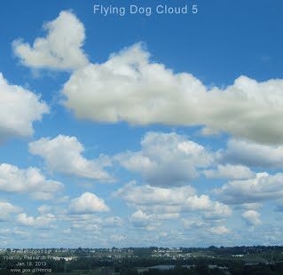 Flying Dog Cloud 5 (Volatility Research) 1000w