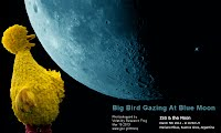 So God Made a Farmer — Big Bird Gazing At Blue Moon (Volatility Research) 1000w