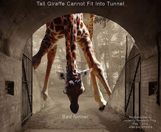 Tall Giraffe Cannot Fit Into Tunnel (Volatility Research)