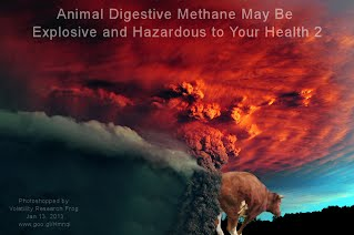 Animal Digestive Methane May Be Explosive and Hazardous to Your Health 2 (Volatility Research) 1000w