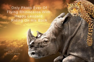 Only Photo Ever of Flying Rhinoceros With Happy Leopard Riding On His Back (Volatility Research) 1000w