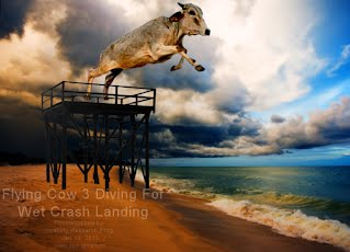 Flying Cow 3 Diving For Wet Crash Landing (Volatility Research) 1000w