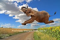 Proof Happy Elephants Really Can Fly (Volatility Research) 1000w