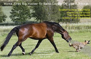 Horse Fires Big Hocker To Send Coyote Off Like A Rocket (Volatility Research) 1000w